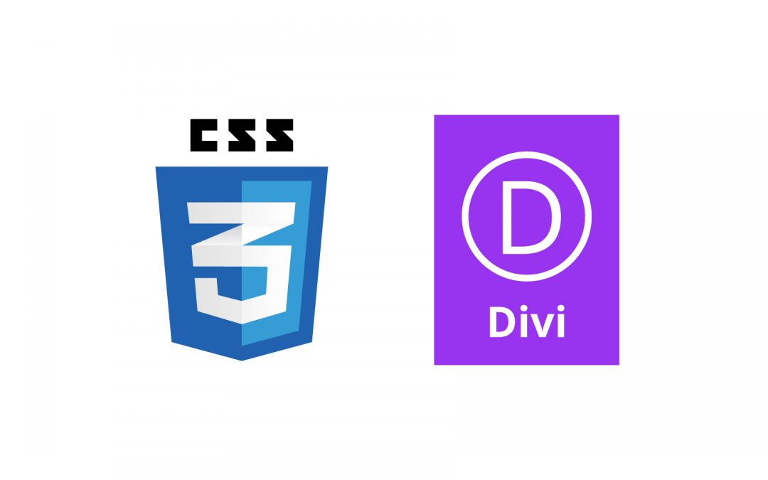 Where to Add Custom CSS to a Divi Website