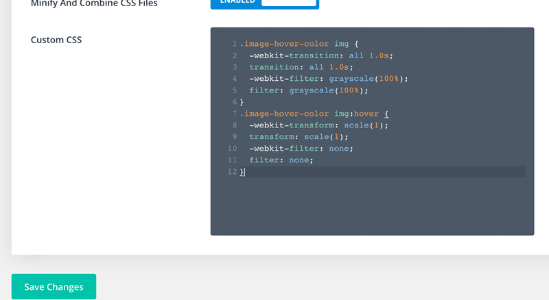Image showing Custom CSS added to Divi Theme Options